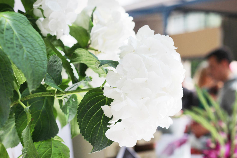 fatimayarie-white-flowers-bloggerbazaar-2014-muenchen-img_9035