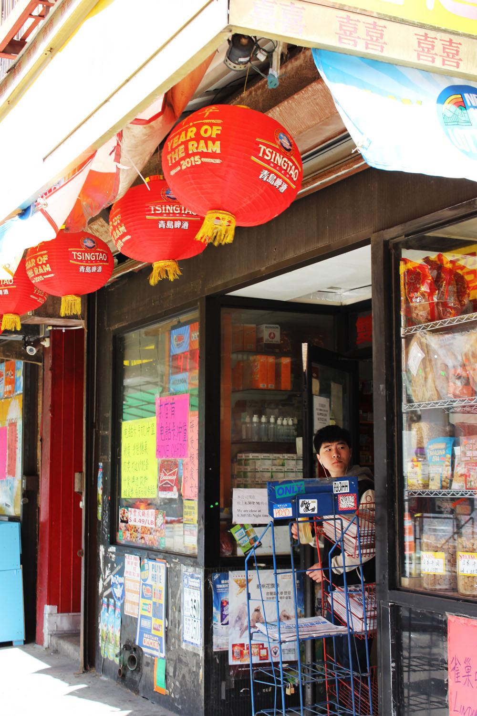 fatimayarie-newyorkcity-chinatown-chinese-shop-img_7781