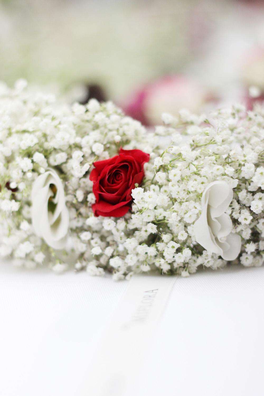 fatimayarie-floralwreath-miflora-redrose-hashmag-bloggerlounge-berlinfashionweek-img_0303