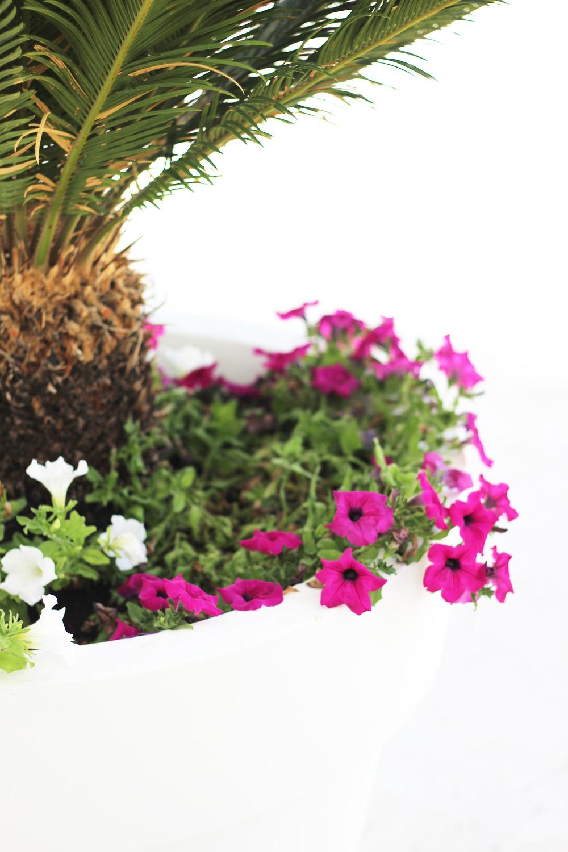fatimayarie-mallorca-flowers-pink-palms-whiteinterior-travelblog-img_1448