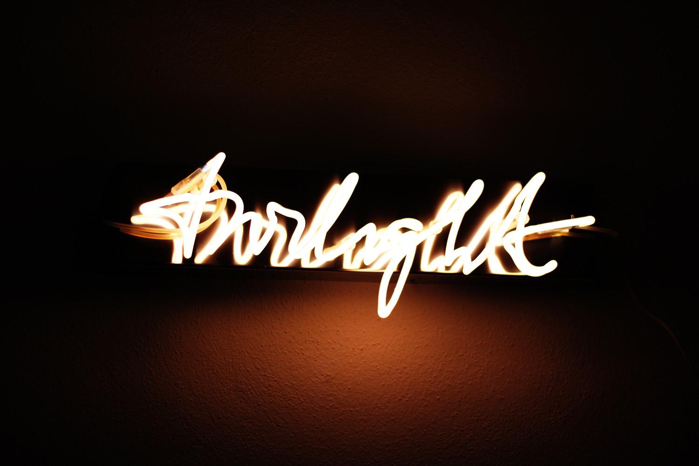 fatimayarie-brigittekowanz-twilight-lightart-artwork-austria-internationalartsmanagement-munich-img_6352